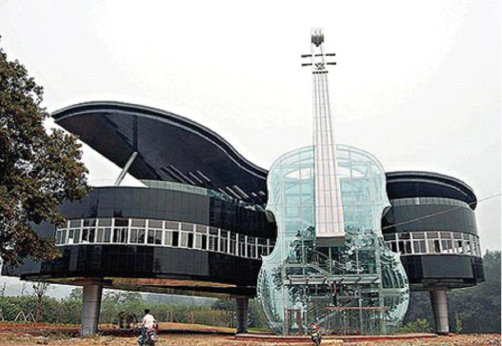 дом скрипка