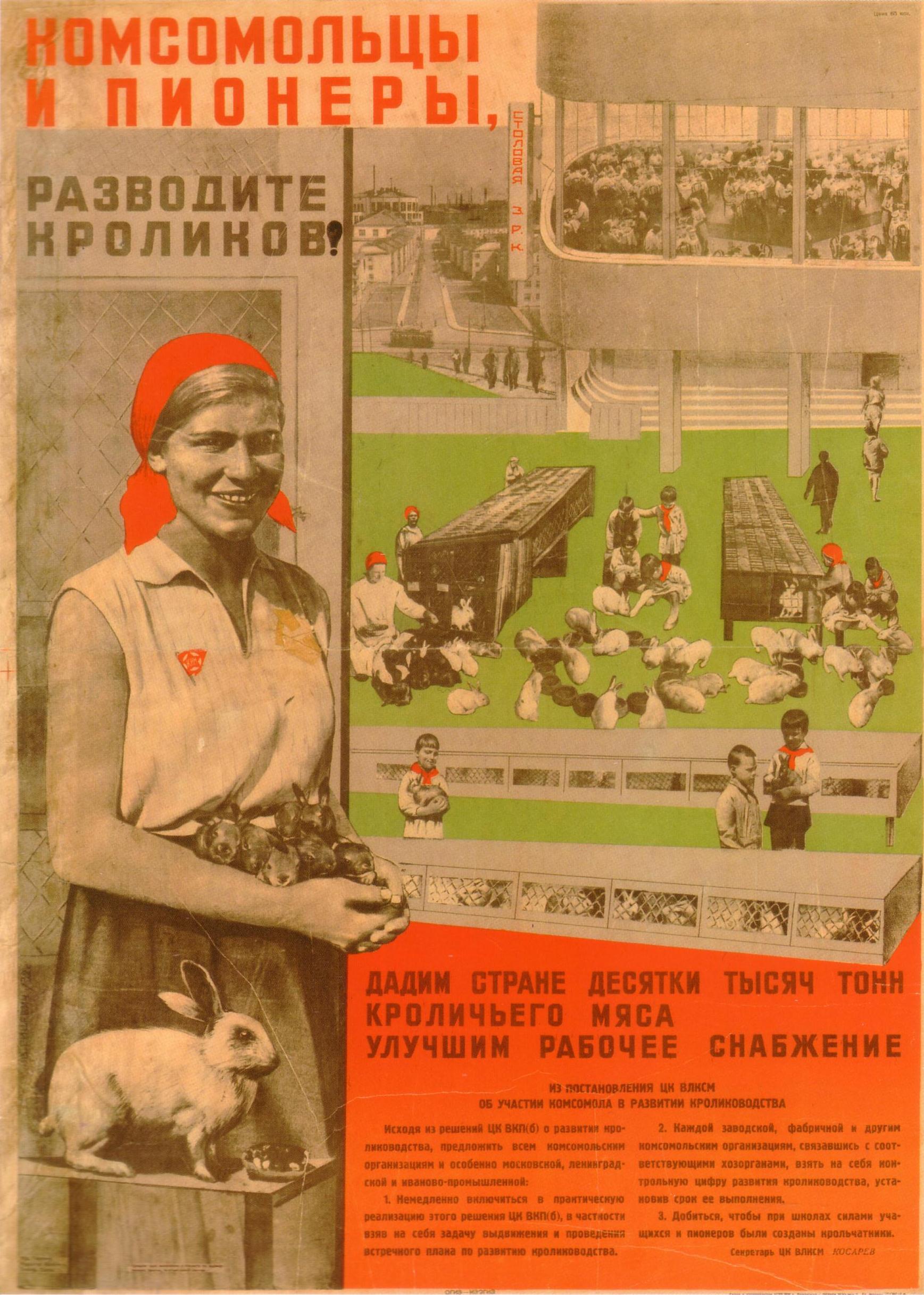 Комсомольцы и пионеры, разводите кроликов! Автор: В. Гицевич Год: 1932