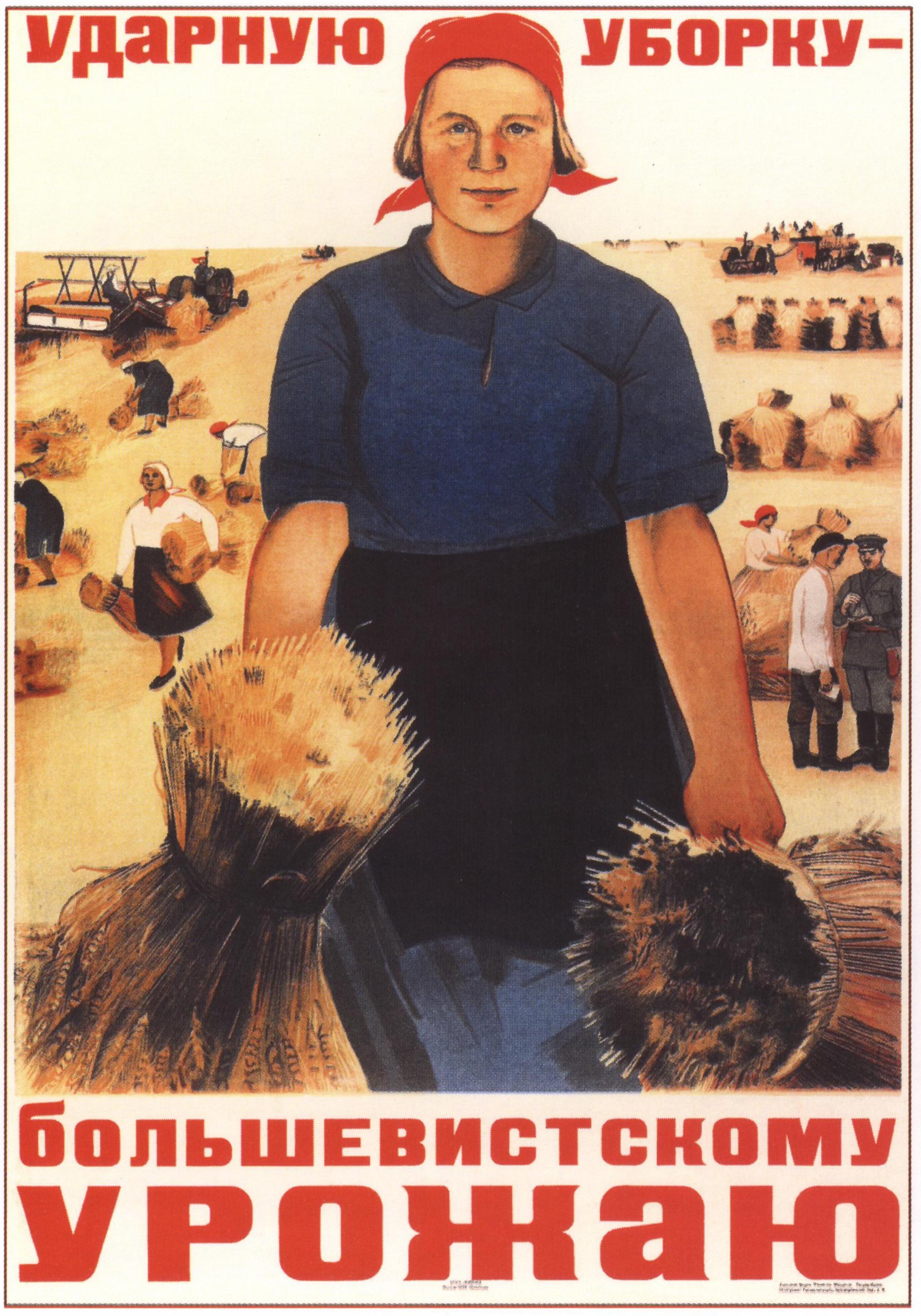 Ударную уборку — большевистскому урожаю Автор: М. Ворон Год: 1934