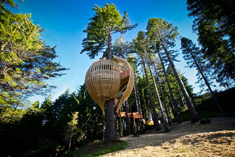 Ресторан Yellow Treehouse. Pacific Environments Architects