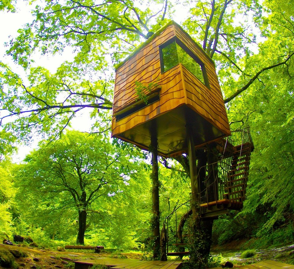 Treehouse by Takashi Kobayashi