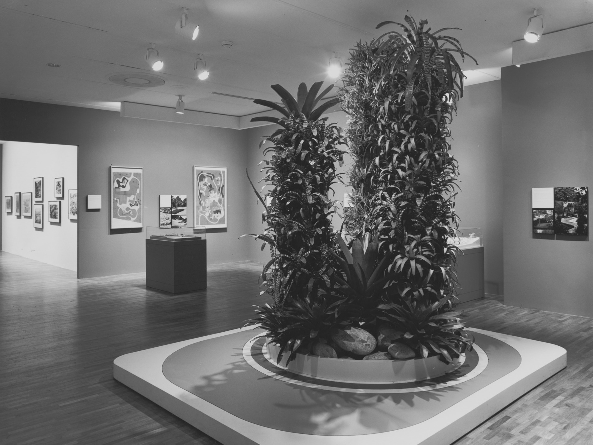 The exhibition Roberto Burle Marx; The Unnatural Art of the Garden. New York. May 23 — August 13,1991