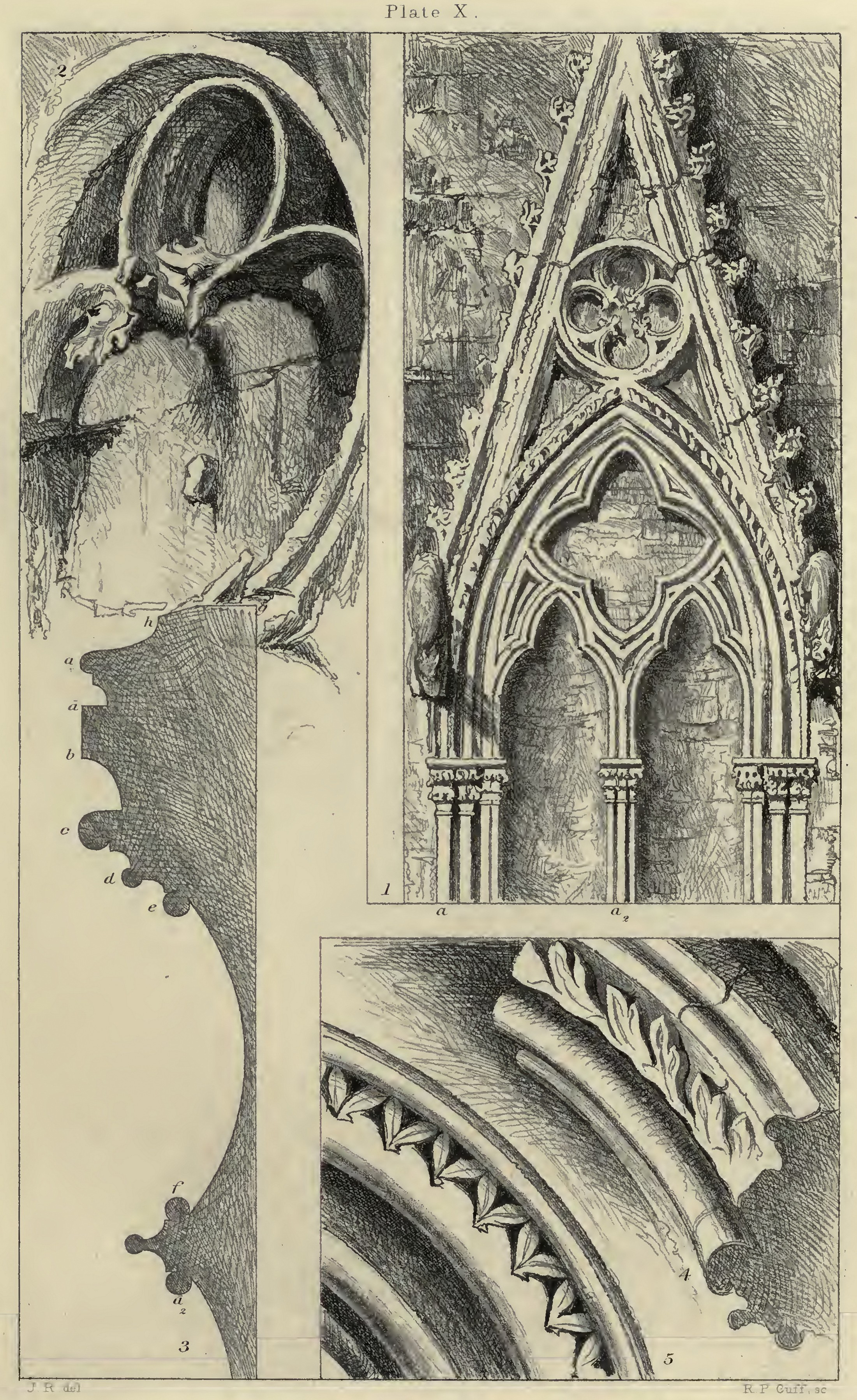 X. Traceries and Mouldings from Rouen and Salisbury