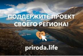 Статистика заявок, поданных на Всероссийский конкурс по созданию туристско-рекреационных кластеров