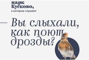 Итоги конкурса концепций айдентики лесопарка «Кусково»