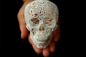череп на кикстартере