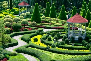 Посетите лекцию «Алгоритм проектирования частного сада. Шаг за шагом»