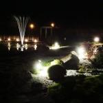Создание водного сада