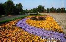 Цветник вдоль здания Госсовета УР (2009).