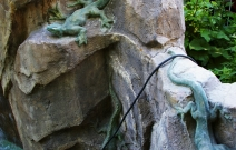 Фрагмент оформления водопада.